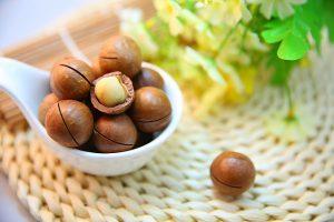 noix-macadamia-naturelle-protéine-sport