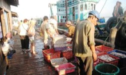 moyens de transport au cambodge